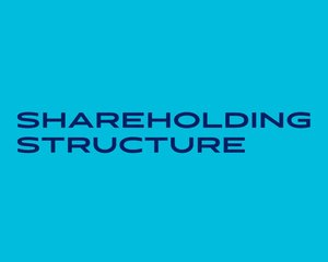 Shareholding structure_col3