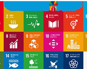 持続可能な開発目標(SDGs)に向けて